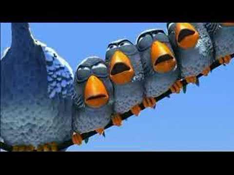 Vuelo de Pájaros